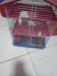 Gaiola hamster 90$ cada as duas 150$