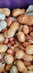 besouros do amendoim