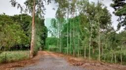Chácara de 25 hectares