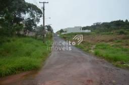 Terreno à venda em Estrela, Ponta grossa cod:391714.001