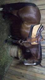 Vendo égua boa de rédea laço 3.6 ano