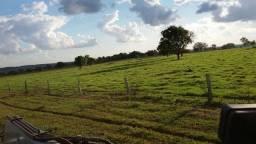 Fazenda Ms.Fundos de Navirai