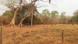 Área rural/ Próximo Barão de Melgaço