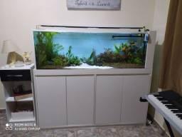 Troco por aquário menor, ou vendo