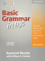 Basic grammar in use - north america english