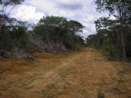Fazenda Aceita 100% Permuta 2.159 Há. Uruçuí-PI. (Chapada/Asfalto) $ 10 Milhões