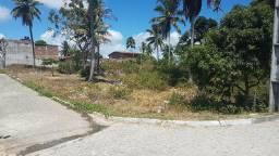 Terreno com 2 hectares em Cruz de Rebouças