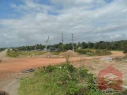 Terreno comercial para locação, zona rural, são gonçalo do amarante -