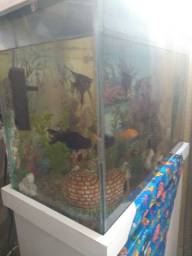 Vendo um lindo aquário completo