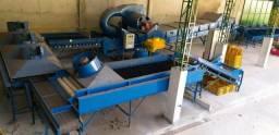 Máquina para Beneficiar e Classificar Laranja