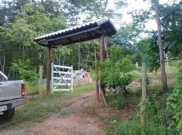 Chácara à venda com 2 dormitórios em Cachoeira do salto, São gonçalo do abaeté cod:774