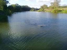 Excelente sitio a beira do rio paraguaçú com 50 tarefas e casas sede e vaqueiro