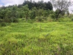 27 alqueires em Tibagi - PR ideal para compensação ambiental