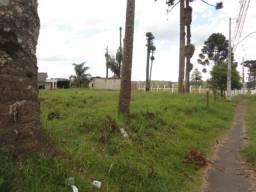 Terreno de 1050m² no bairro Borda do Campo