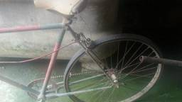Bicicleta colecionador