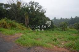 Terreno à venda em Estrela, Ponta grossa cod:391713.001