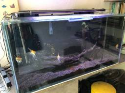 Aquario Completo 324 litros