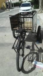 Bicicleta carrosa