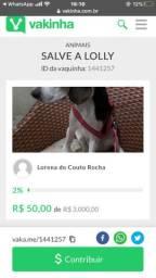 Vaquinha on-line