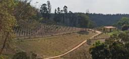 Sítio Rico em Água com Localização Privilegiada em Belo Vale