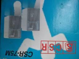 Caixa de Som 40 watts rms 8 ohms
