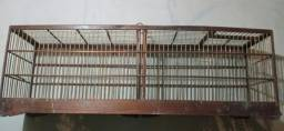Gaiola passarinho