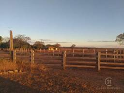 Fazenda à 98 km de guanambi   ba