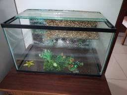 Vendo aquário de vidro sem bomba por apenas R$100