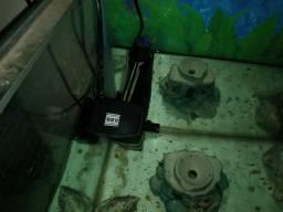 Venda aquário