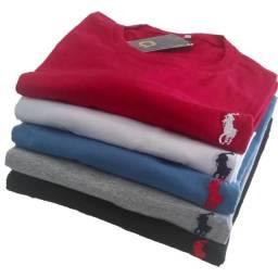 Camisa masculina 100% algodão malha 30.1 kit com 5 em promoção