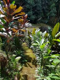 Sitio Casinha do Bosque