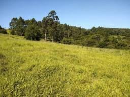 CL - Sítio com área de 1 hectare próximo a RS 240, aceito carro