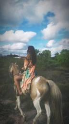 Passeios à Cavalo