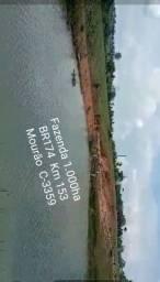 Fazenda na pista BR174 Km 153, 1.000ha - MISTA para Gado e Peixe