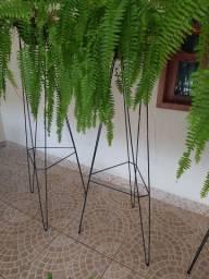 Suporte tripé de ferro para plantas samambaias