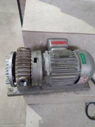 Motor elétrico viges trifásico