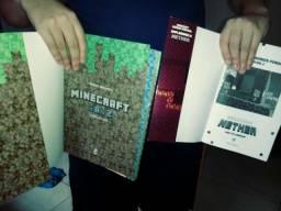 Livro Minecraft e cavalo