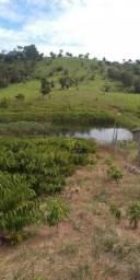 Chácara à venda por R$ 220.000 - Zona Rural - Nova Brasilândia D'Oeste/RO