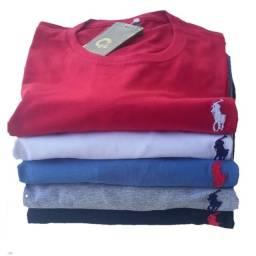 Kit 5 camisas masculina com bordado