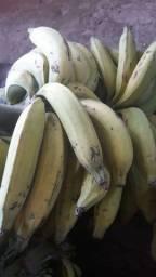 Vende-se Bananas da terra