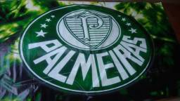 Painel time palmeiras