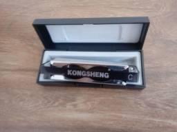 Gaita Kongsheng em Dó