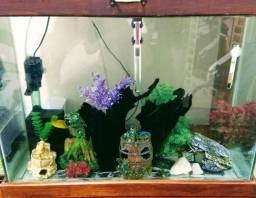 Aquário Rustico Grande + de 15 itens decorativos