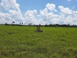 Fazenda à venda, por R$ 8.500.000 - São Miguel do Guaporé/RO