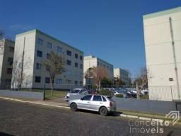 Apartamento para alugar com 3 dormitórios em Jardim carvalho, Ponta grossa cod:392725.001