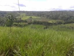 2 fazendas