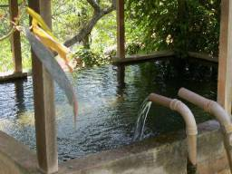 Belíssimo sitio, com árvores, lago com peixes e piscina em Itaipuaçu - Maricá