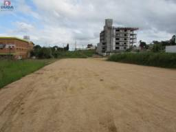 Terreno para alugar em Ceará, Criciúma cod:23546