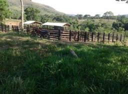 Fazenda 85 alqueires Mun Pirenópolis