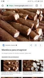 Macaxeira